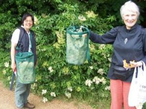 veronica and kirsten harvesting