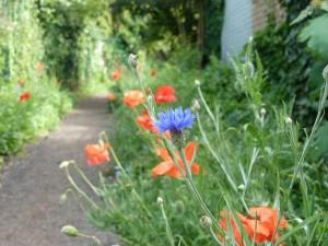 Radbourne Walk